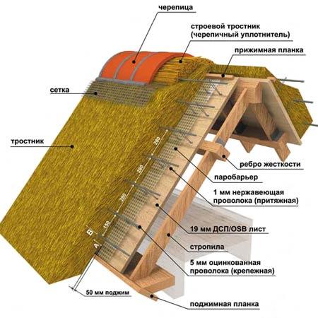 фото крыши зданий